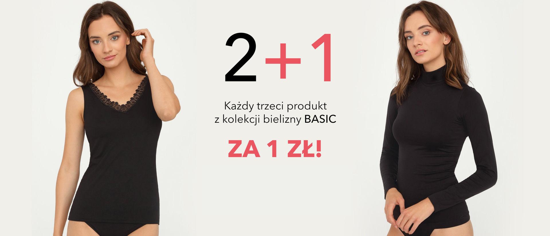Basic 2+1