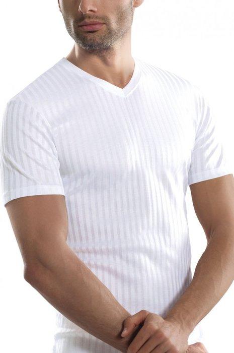 Koszulka męska – V-neck - Gatta